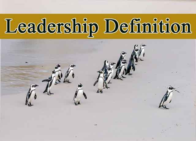 Leadership Definition Inspiring 100%