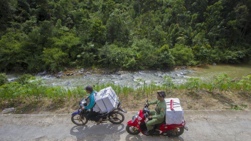 Berkurangnya Area Hutan Primer dan Sekunder Picu Banjir Terbesar Banjir di Kalsel
