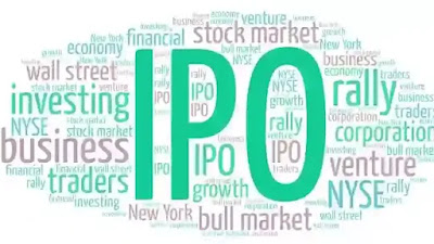 Should you apply for  the IPO  or not