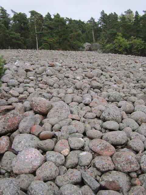 muinaisranta eli valtavasti päänkokoisia kiviä
