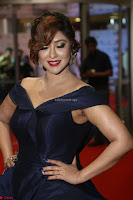 Payal Ghosh aka Harika in Dark Blue Deep Neck Sleeveless Gown at 64th Jio Filmfare Awards South 2017 ~  Exclusive 139.JPG