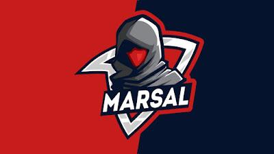 Mentahan Logo Esports Assassin