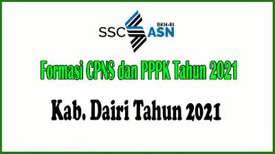 Alokasi Formasi CPNS dan PPPK Kabupaten Dairi Tahun 2021