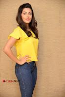 Actress Anisha Ambrose Latest Stills in Denim Jeans at Fashion Designer SO Ladies Tailor Press Meet .COM 0011.jpg