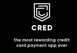 How exactly CRED credit card payments app makes money?