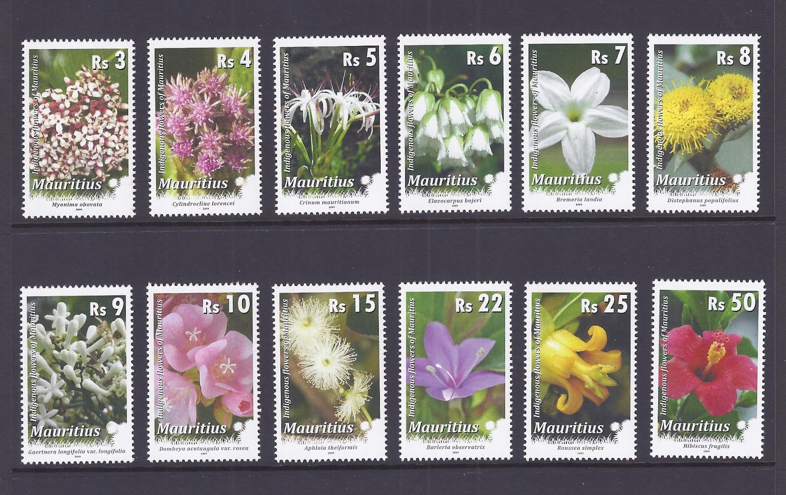 Mauritian philatelic blog indigenous flowers of mauritius the small size and isolation of mauritius have enabled its biodiversity to develop unique characteristics and a high level of endemism through thousands of izmirmasajfo