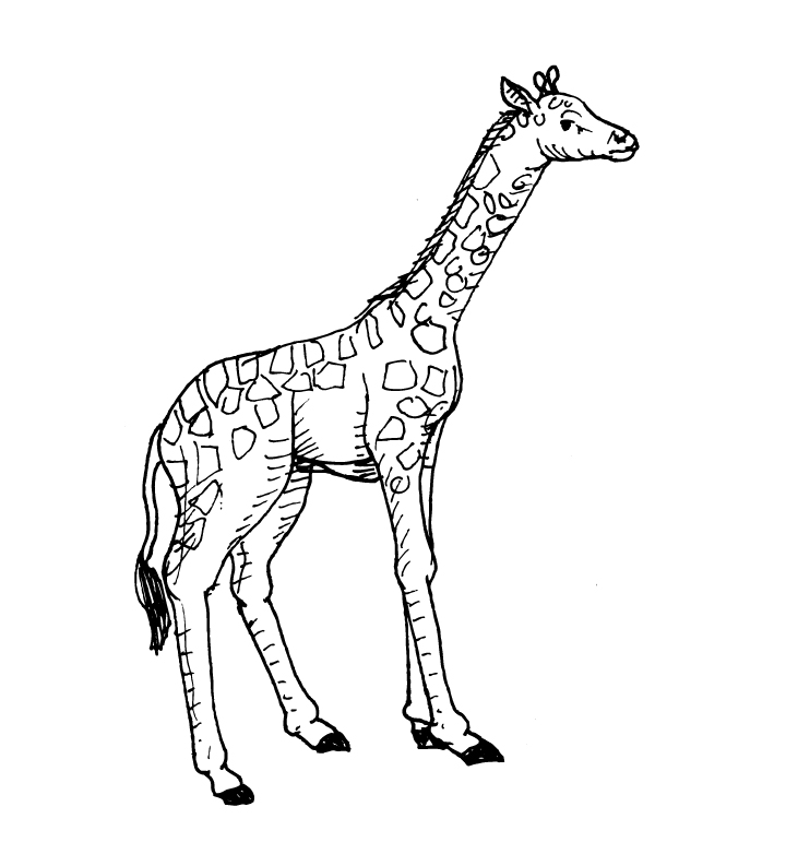 tribal giraffe coloring pages
