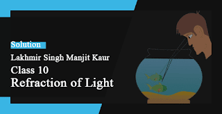 Solutions of Refraction of Light Lakhmir Singh Manjit Kaur VSAQ, MCQ, HOTS, and LAQ Pg No. 219 Class 10 Physics