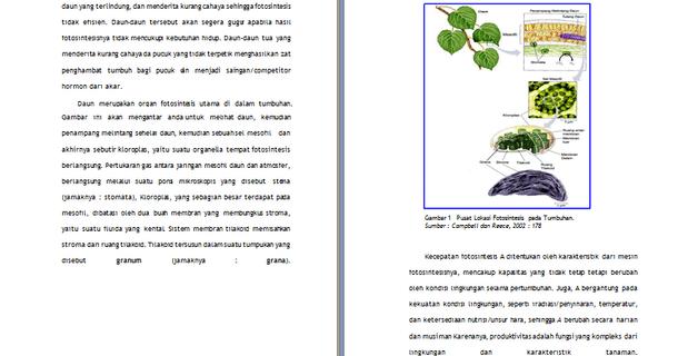 Contoh Makalah Biologi Fotosintesis Proses Dasar Contoh Makalah Docx