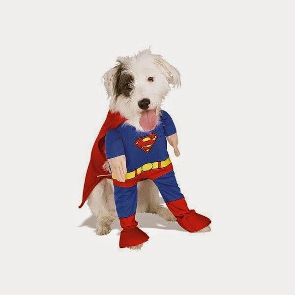 disfraz de superman para perros, disfraces para mascotas