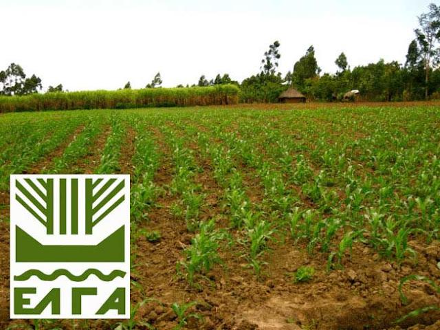 Ανακοίνωση του Δήμου Λαρισαίων για την υποβολή αρχικών αιτήσεων χορήγησης ενισχύσεων καλλιεργητών