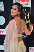Prajna in Cream Choli transparent Saree Amazing Spicy Pics ~  Exclusive 002.JPG