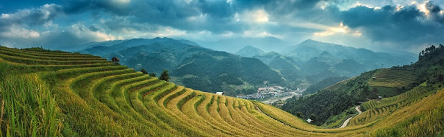 The Best Time To Visit Terraced Fields In Sapa, Vietnam
