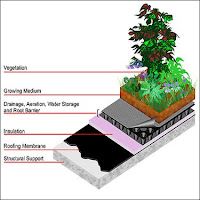 The Green Market Oracle Types Of Green Roofs