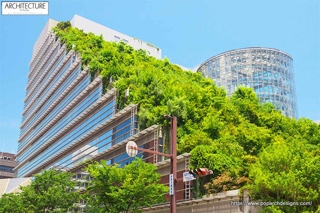 Green living wall trend