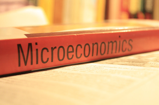 Pengertian Ekonomi Mikro dan Contohnya Lebih Jelas