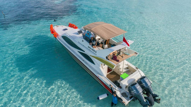Sewa Speedboat Raja Ampat Murah