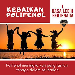 8 Kebaikan Polifenol Vivix shaklee malaysia