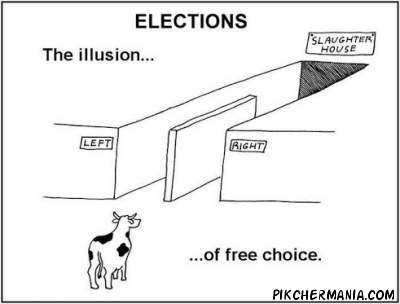 funny illusion of free choice