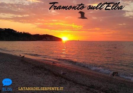 Vacanze Elba consigli