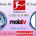 Prediksi Hertha BSC vs Schalke 04 — 1 Februari 2020