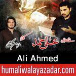 http://www.humaliwalayazadar.com/2016/09/ali-ahmed-nohay-2017.html