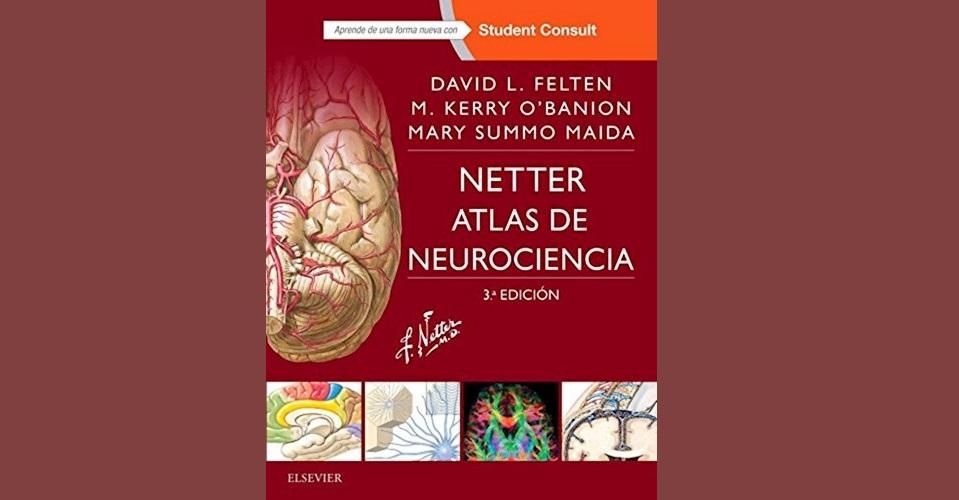 Netter. Atlas de Neurociencia. III Edición. PDF