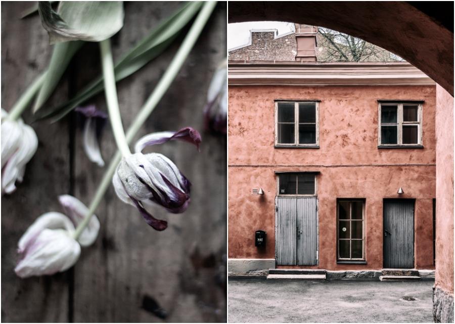 Helsinki, valokuvaus, valokuvaaja, tulppaanit, Visualaddict, Frida Steiner, valokuvaus, arkkitehtuuri, vanha talo, sisäpiha, Finland