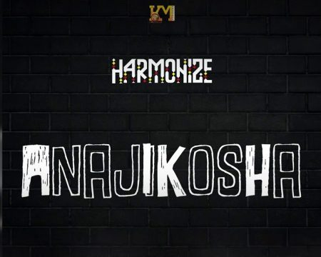 AUDIO | HARMONIZE - ANAJIKOSHA | DOWNLOAD