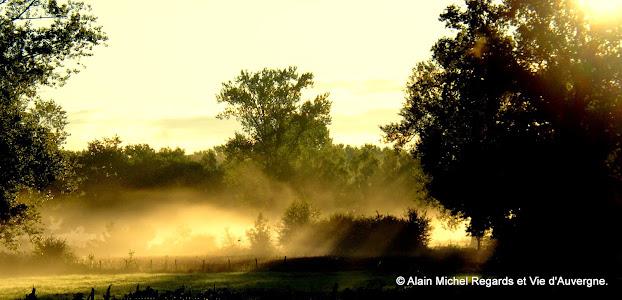 paysage d'auvergne, plaine, arbres, brume matinale