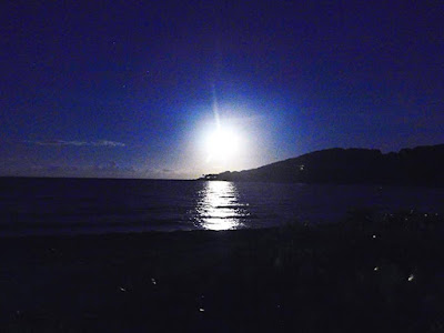 moon, moonrise, #payabay, #payabayresort, paya bay resort, beauty, nature,