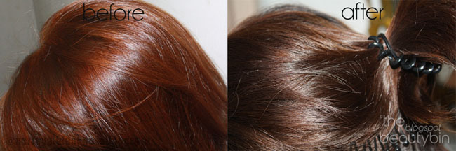 Brown Hair Color Chart Hortaleza