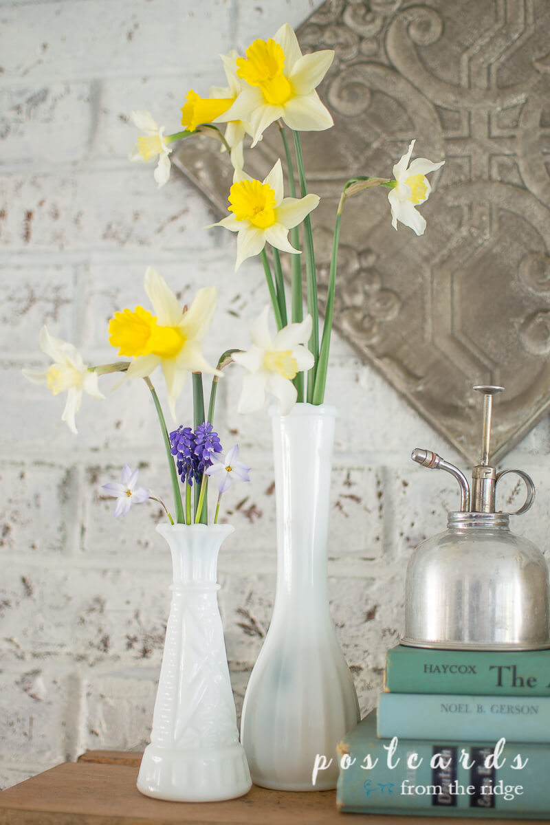 white milk glass vases with spring flowers