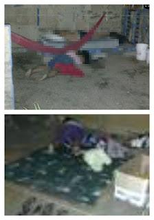 Masacran a 5 integrantes de la (Cocei) en Oaxaca
