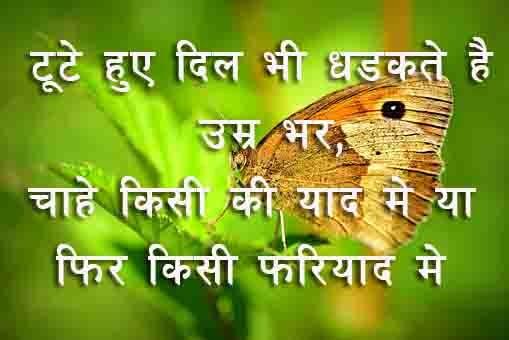 HINDI SHERI