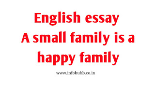 English essay a small family is a happy family, english essay