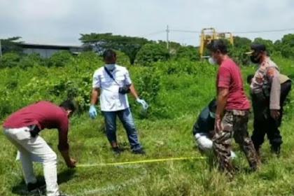 Mayat Pria Penuh Luka Tusuk Ditemukan di Semak Belukar Pasuruan