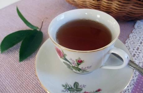 cara minum rebusan daun sirsak