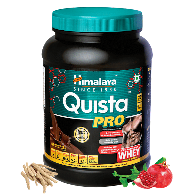 Himalaya Quista Pro Review