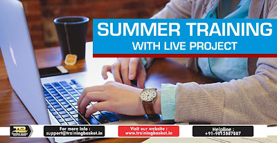 Best summer training institute In Noida
