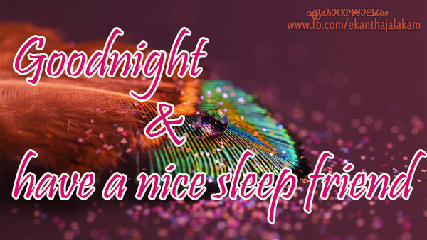 Lovely Quotes For You: Good Night and Have a Nice Sleep Friend