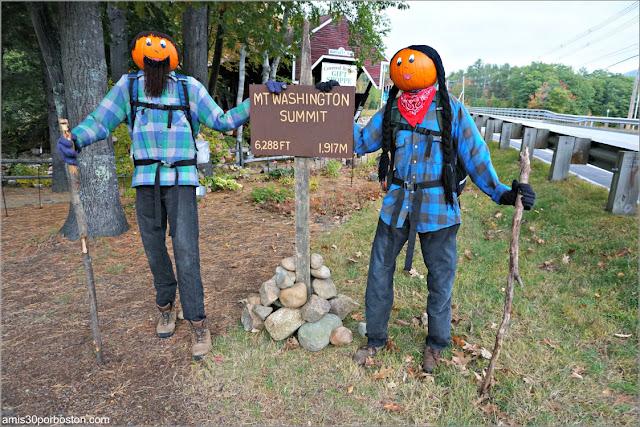 Senderistas en el Return of the Pumpkin People de Jackson en New Hampshire