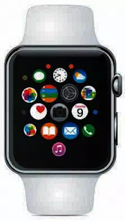 FIGURE 1 The Apple Watch is a wearable computer.