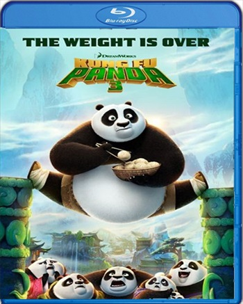 Kung Fu Panda 3 2016 Dual Audio Hindi 480p BluRay 300mb