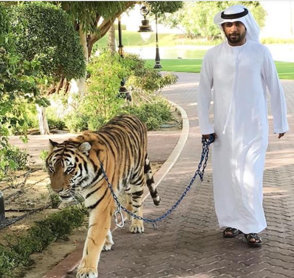 Fakta Wow Tentang Dubai