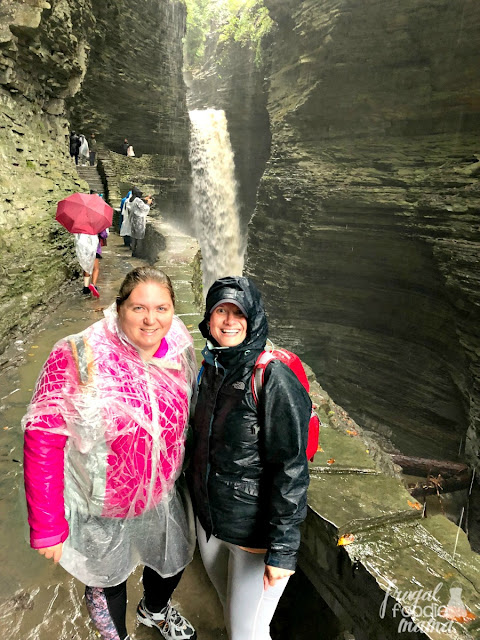 Just south of Seneca Lake, you will find Watkins Glen State Park. Perhaps the most famous of the state parks in the Finger Lakes region of New York, Watkins Glen is a waterfall chaser's paradise.