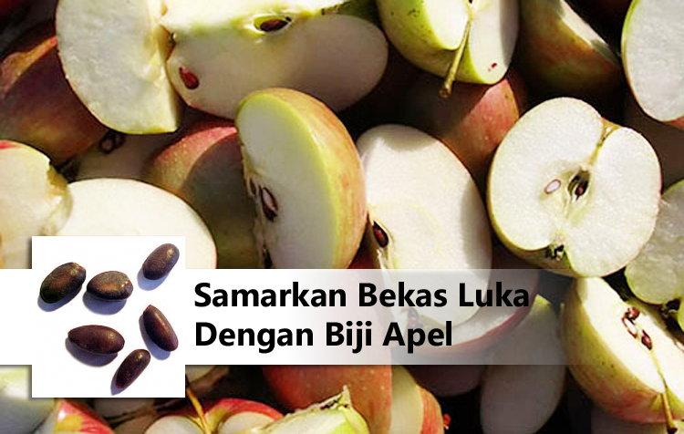 Samarkan Bekas Luka Dengan Biji Apel