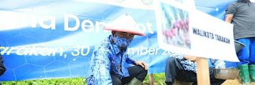 Penanaman Perdana Program Demonstrasi Plot (Demplot) Bawang Merah