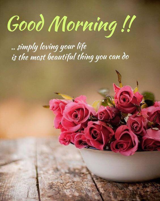 romantic good morning flowers for lovers