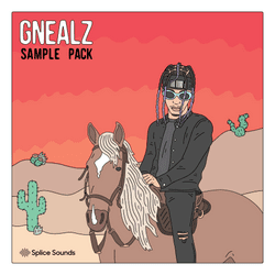 Splice - Gnealz: That's It Right There Sample Pack